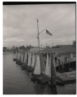 Small sailboats ('D' class) docked at the yacht club