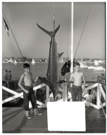 Two boys with a marlin catch