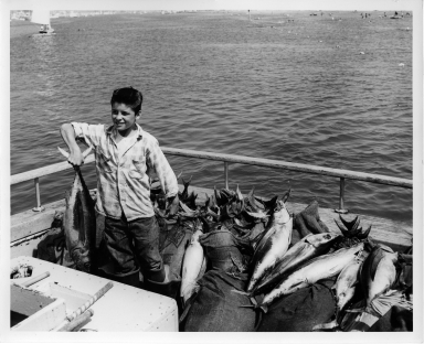 Fish in back of boat with young boy holding one.