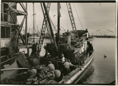 Fishermen unloading catch at dock