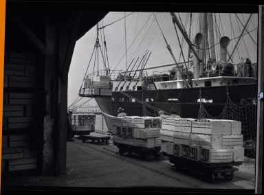 Loading Sunkist oranges onto ship