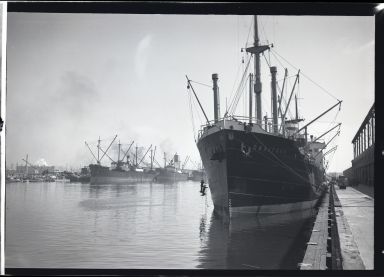 Portland, Johnson Line, and unknown ships at dock