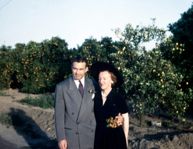 A couple with an orange grove in the background.