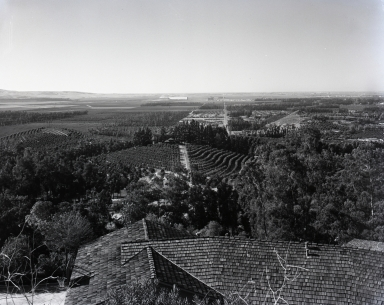 "Looking south from Panorama Heights toward a vast sea of orange groves when the orange was ""king"" in Orange County. (The two large buildings on the horizon are the Santa Ana U.S. Navy Lighter-than-air base hangars, home of the wartime ""Blimp"" coast patrol)."