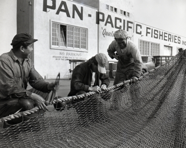 Fish Harbor, San Pedro. 1947. Mending nets and cleaning ship.