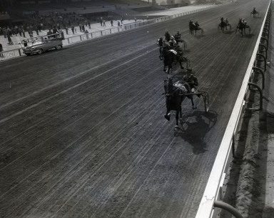 "Santa Anita Racetrack. Harness racing. ""Major R. Braden"" (horse) and Tom King (driver). (April 18)"