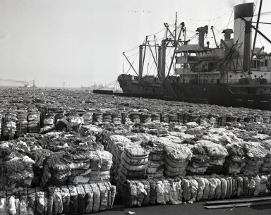 Loading baled cotton for shipping.