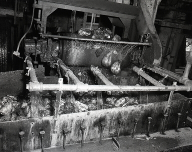 Holly Sugar factory. Photographs shows stage in process of converting sugar beets to refined sugar (i.e. grinding the beets, extracting the sugar, boiling the syrup under high vacuum, crystallizing the sugar, filling the sacks, and warehousing). Buildings torn down in 1983. (August 13)