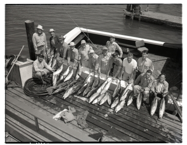 Group of fishermen displaying the albacore they caught.