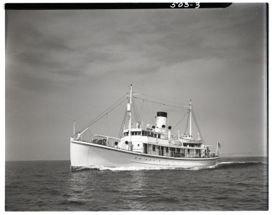 Steamship <i>Honolulu</i>