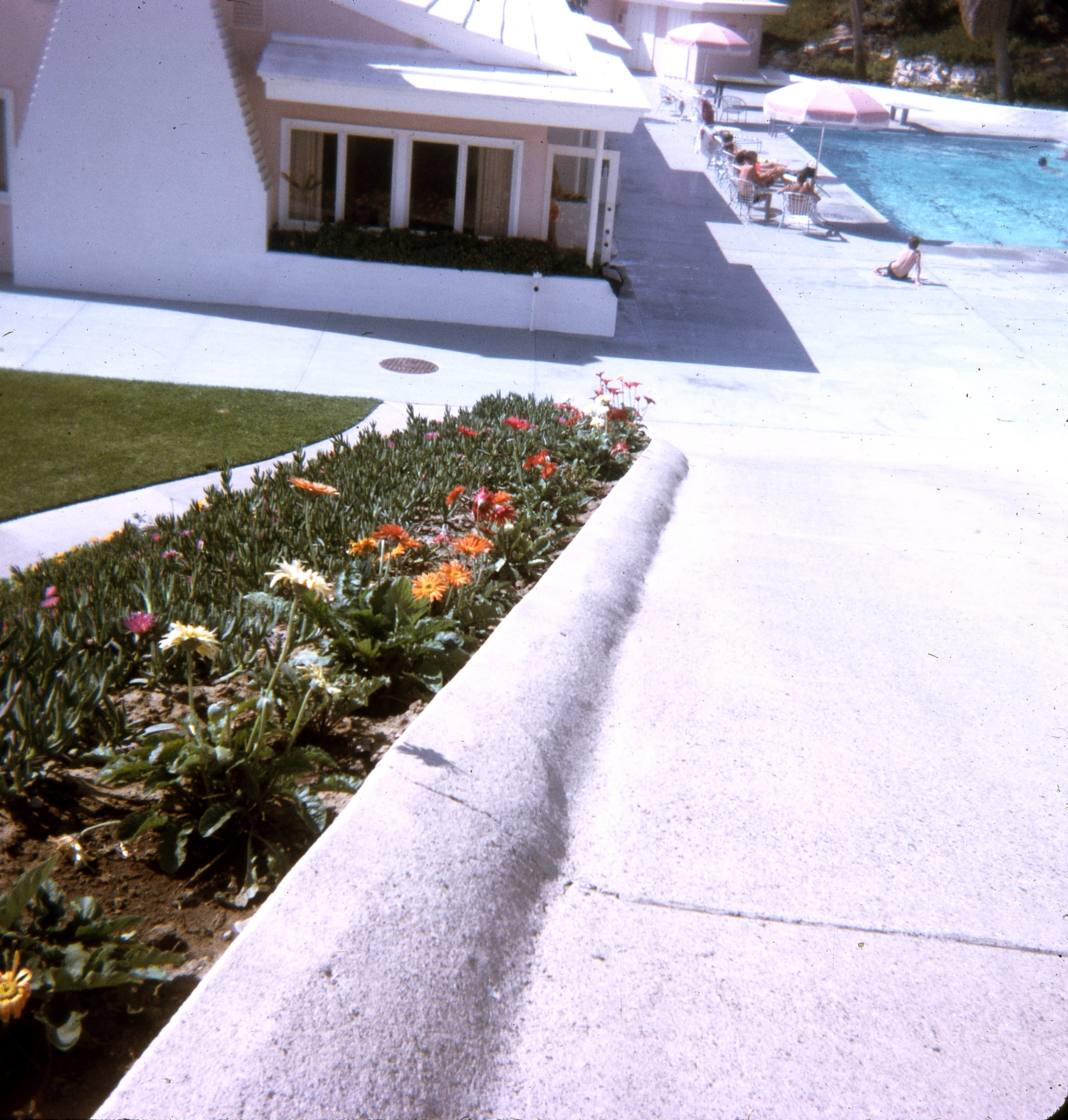 A flowerbed along a walkway leading to the swimming pool at the Dana Strand Club.